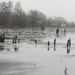 Зимняя ловля в коряжнике на мормышку