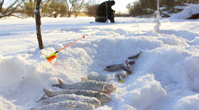 Зимний улов язя на мормышку