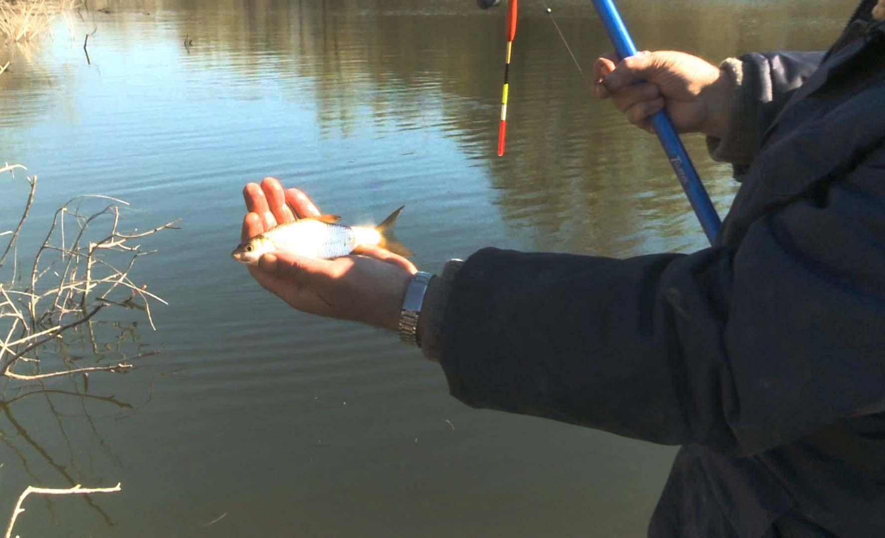 рыбалка в марте по открытой воде