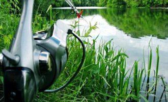 рыбалка на илистом дне