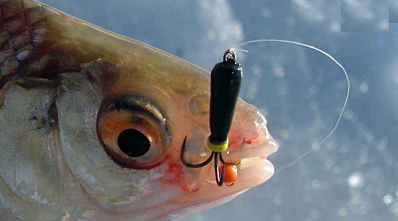 мормышки чертики для рыбалки