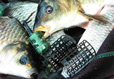 Фидерный монтаж для рыбалки