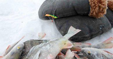 Рыбалка в глухозимье и ее особенности