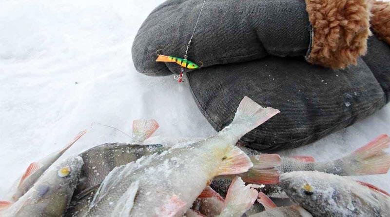 Рыбалка в глухозимье и секреты клева