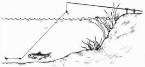 Полудонка для ловли леща весной