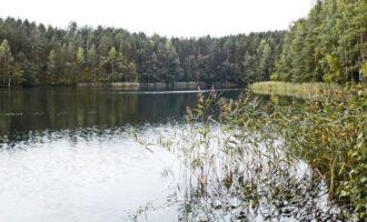 Озеро Морозовское в поселке Мичуринское