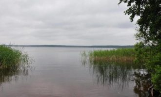 Озеро Журавлевское в поселке Мичуринское