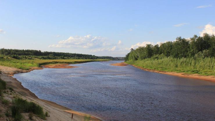Река Тым в Красноярском крае