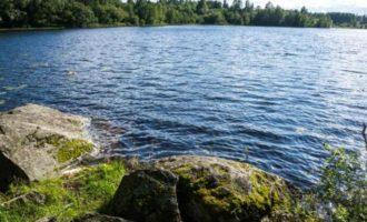 Озеро Подосиновское Нижнее в поселке Кузнечное