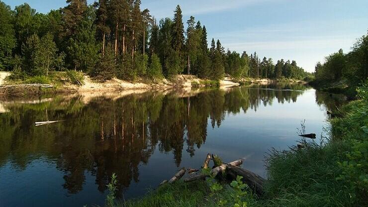 Река Керженец в селе Огибное