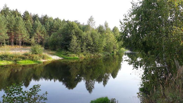 Река Узола в селе Налескино