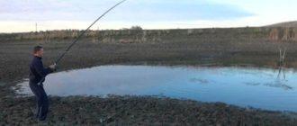 Рыбалка на обмелевших водоемах
