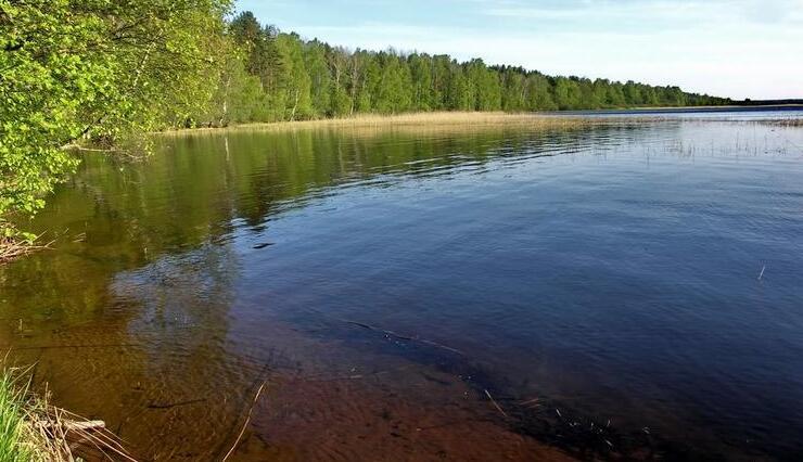 Озеро Александровское в поселке Александровка