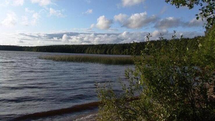 Озеро Сенновское в поселке Подгорное