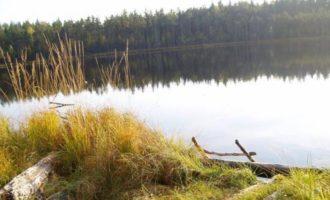 Озеро Видное в поселке Шушино