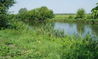 Река Пьяна в поселке Княж-Павлово