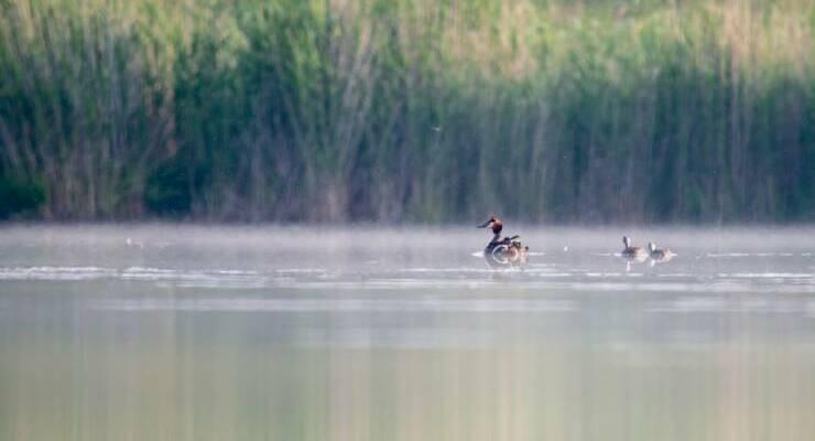 Озеро Чаголь в Красноярском крае
