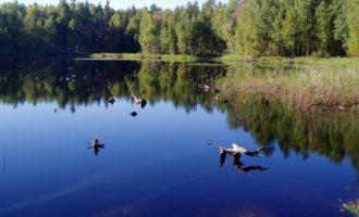 Озеро Дерябино в селе Черная Маза