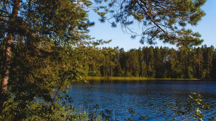 Озеро Двойное в поселке Свободное