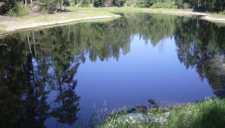 Озеро Конево в селе Мухтолово