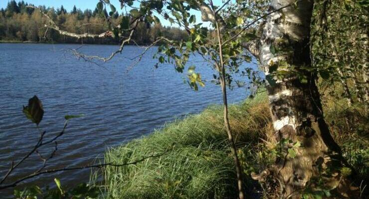 Озеро Мадалаярви в поселке Хиттолово