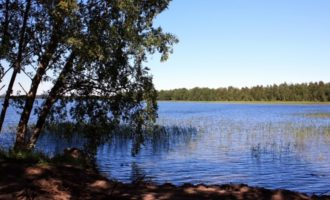 Озеро Отрадное в поселке Кутузовское