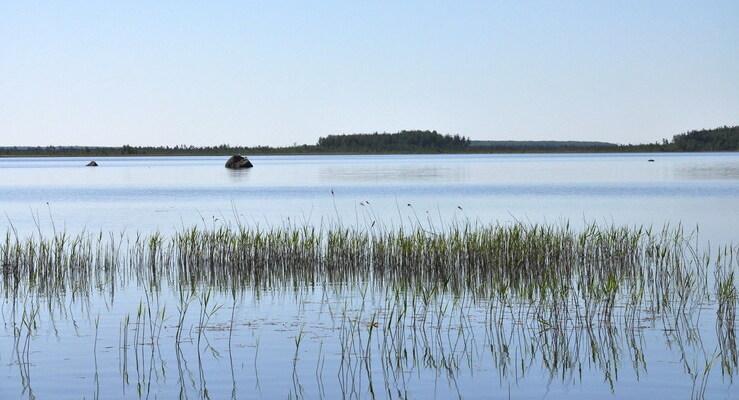 Озеро Вялье в поселке Малая Ящера
