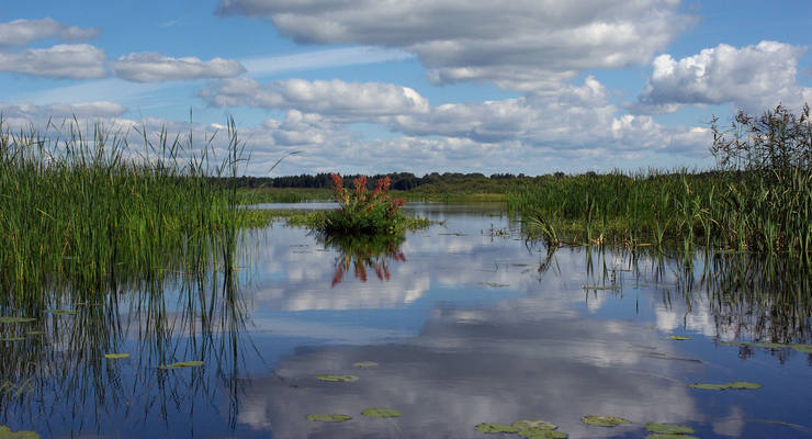 Озеро Большое Раковое в поселке Климово