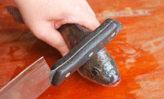 Как безболезненно умертвить рыбу